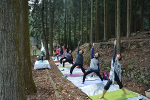 Ukiah Forest Yoga Therapy