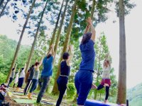 FitDiva Forest Yoga57